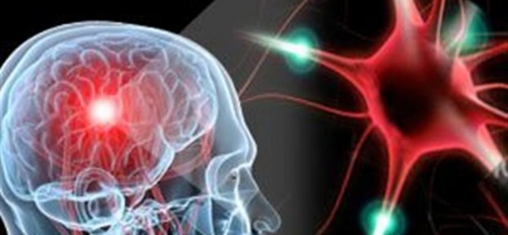 H έλλειψη βιταμίνης E προκαλεί εγκεφαλικές βλάβες