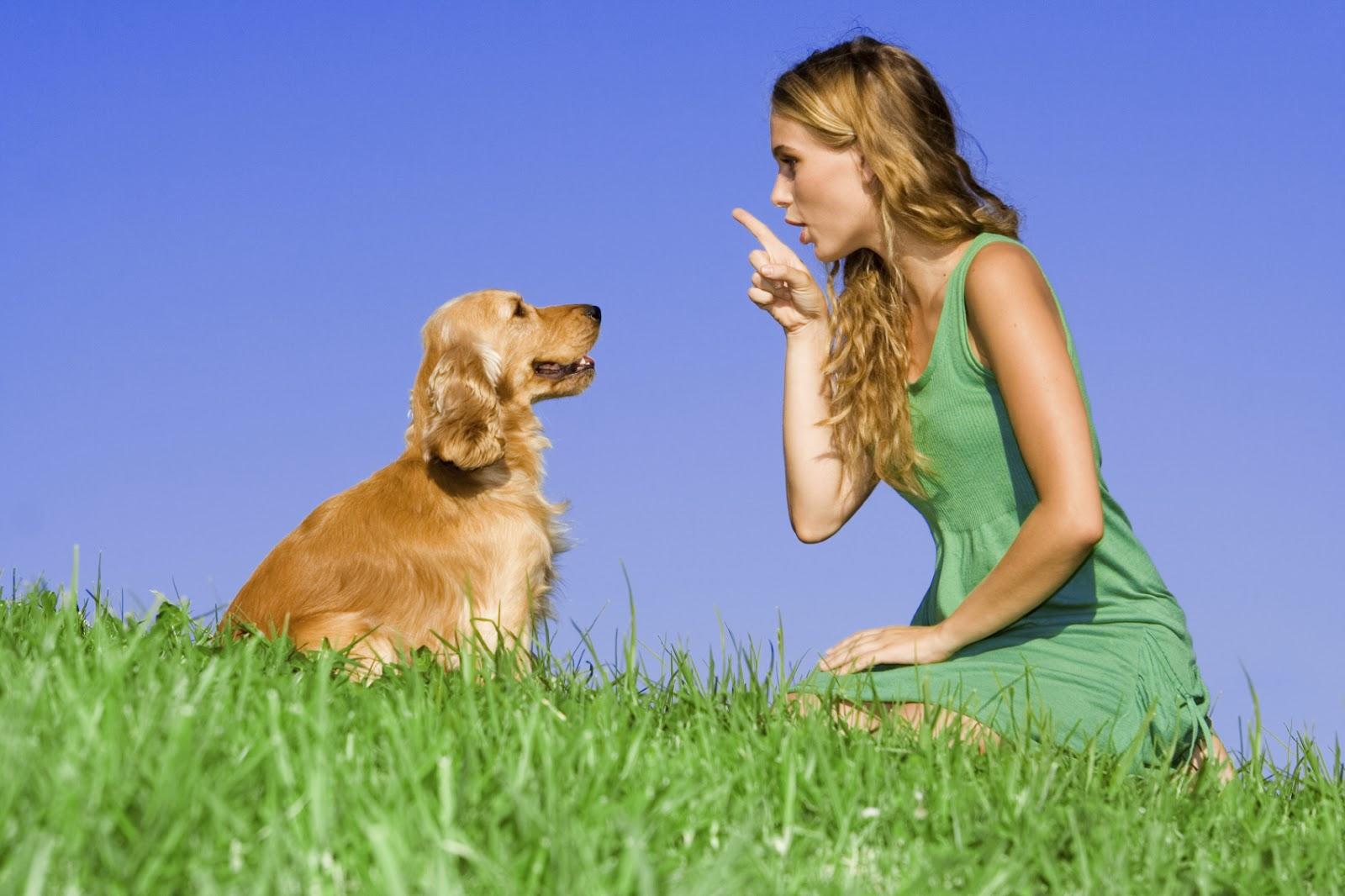 Η ανθρώπινη όσφρηση ανταγωνίζεται αυτή του … σκύλου