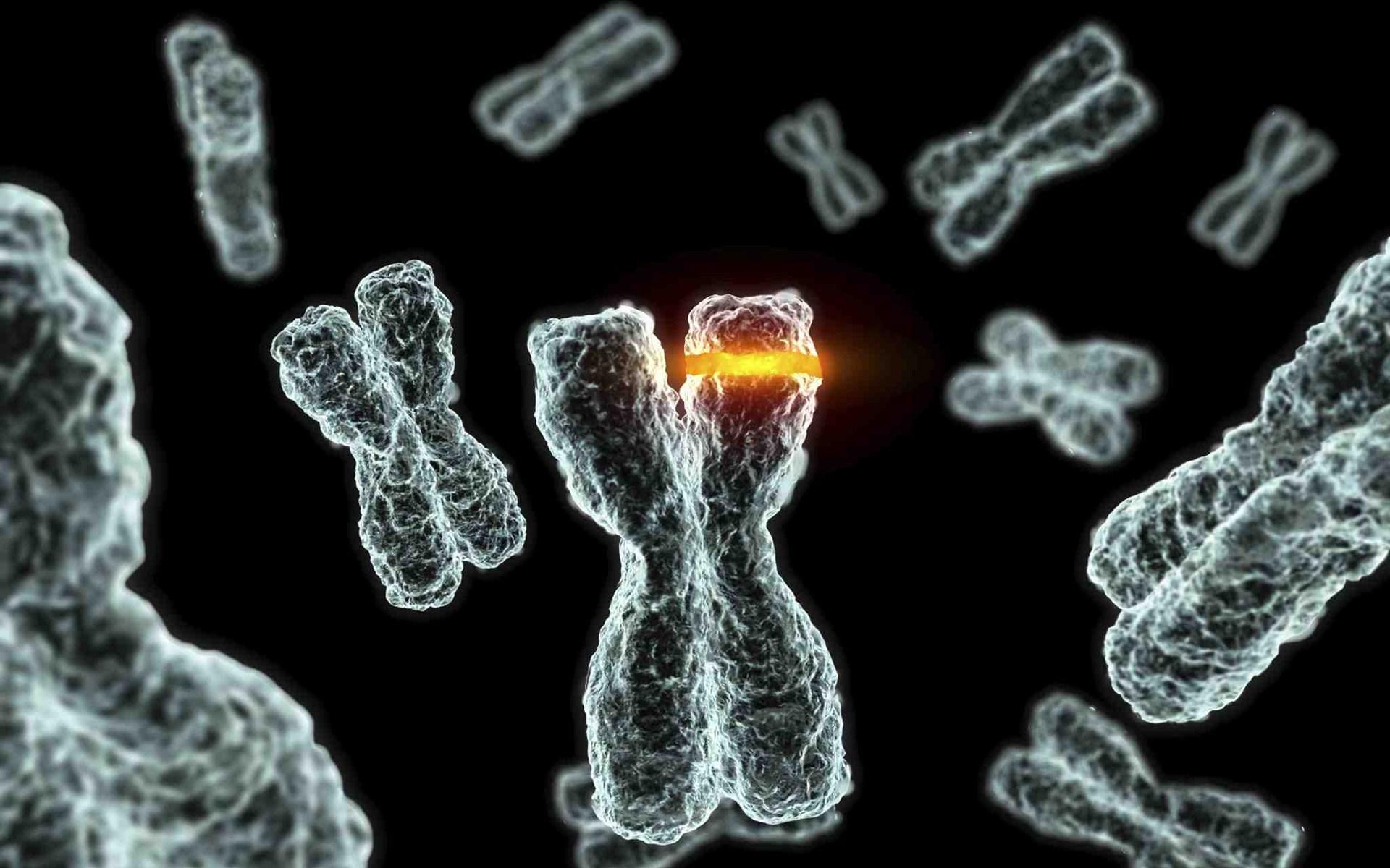 Πιθανό γενετικό υπόβαθρο της νευρικής ανορεξίας στο χρωμόσωμα 12
