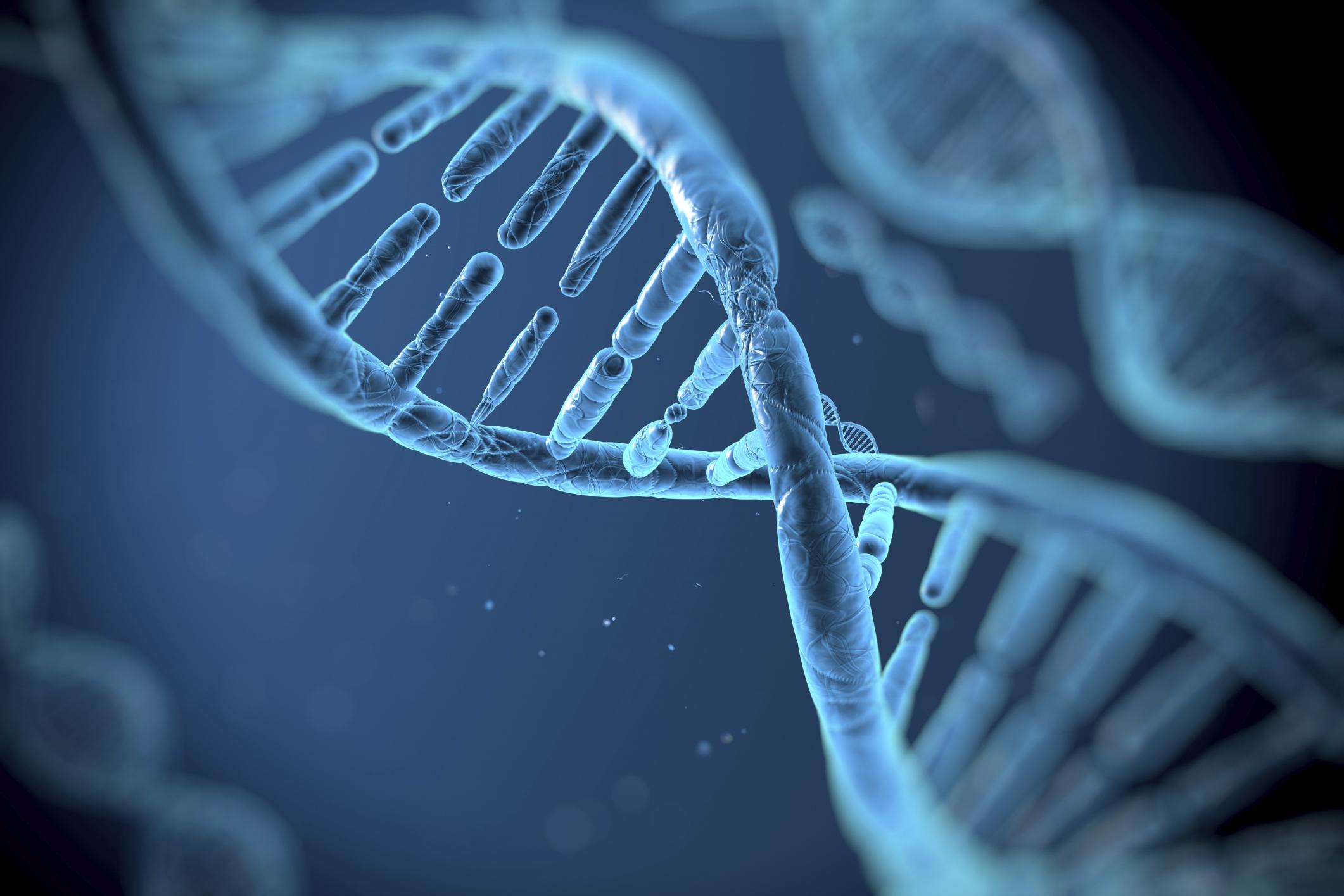 Γονίδιο προστατεύει την καρδιά των κατοίκων του Μυλοποτάμου Κρήτης