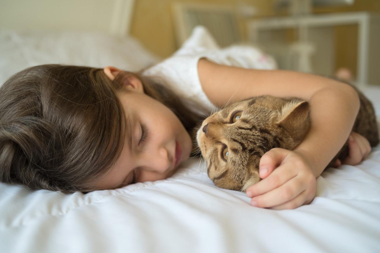Κατοικίδια Covid-19: Εντοπίστηκαν από επιστήμονες στοιχεία μετάδοσης κορωνοϊού από άνθρωπο σε γάτα