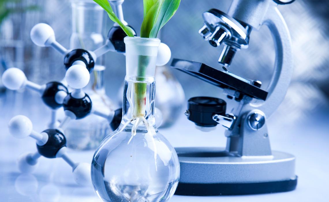 """""""Χρυσή"""" εξαγορά εγκατάστασης παραγωγής βλαστοκυττάρων από Κορεάτες"""