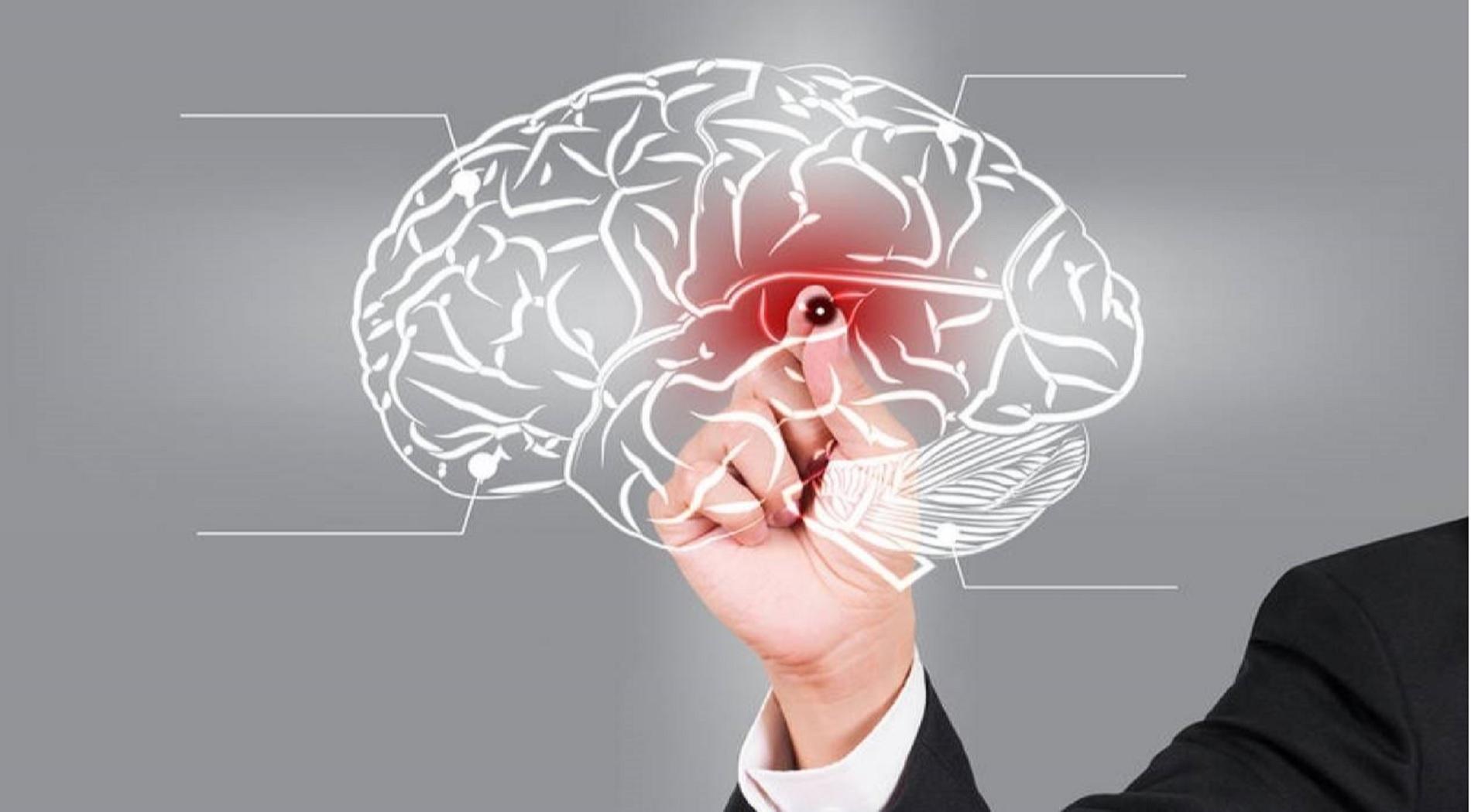 Αλγόριθμος ανιχνεύει τις εγκεφαλικές αιμορραγίες