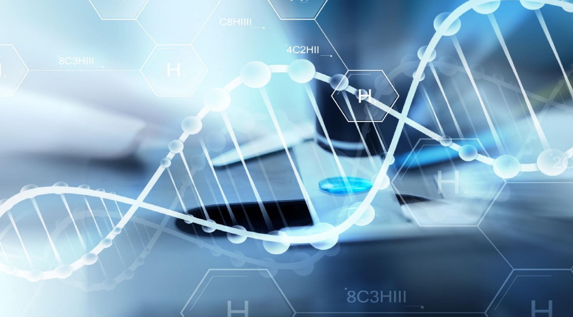 Οι γενετικές αλληλουχίες που μας οδηγούν στη γήρανση