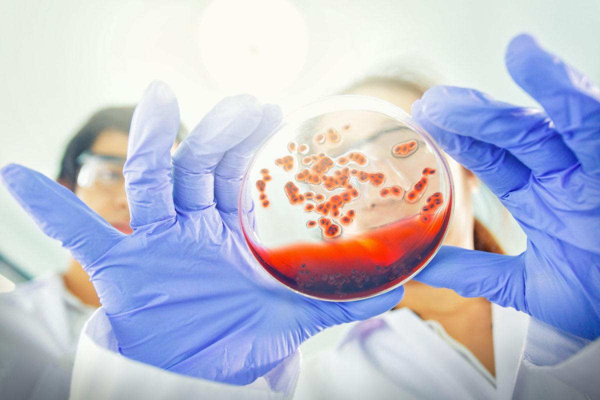 Πώς και γιατί μας μολύνουν οι ιοί όπως ο κοροναϊός – Τι σχέση έχει το… σαπούνι