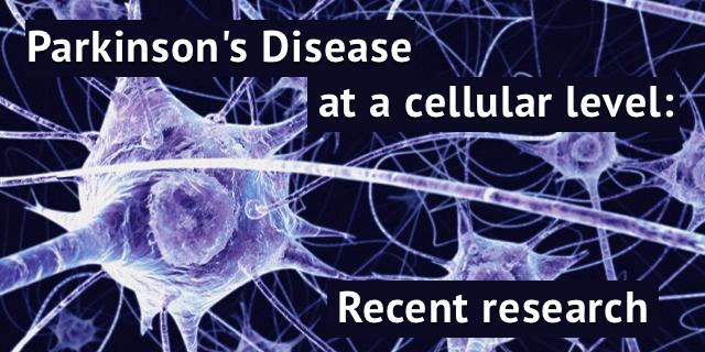 neuronspd2.jpg