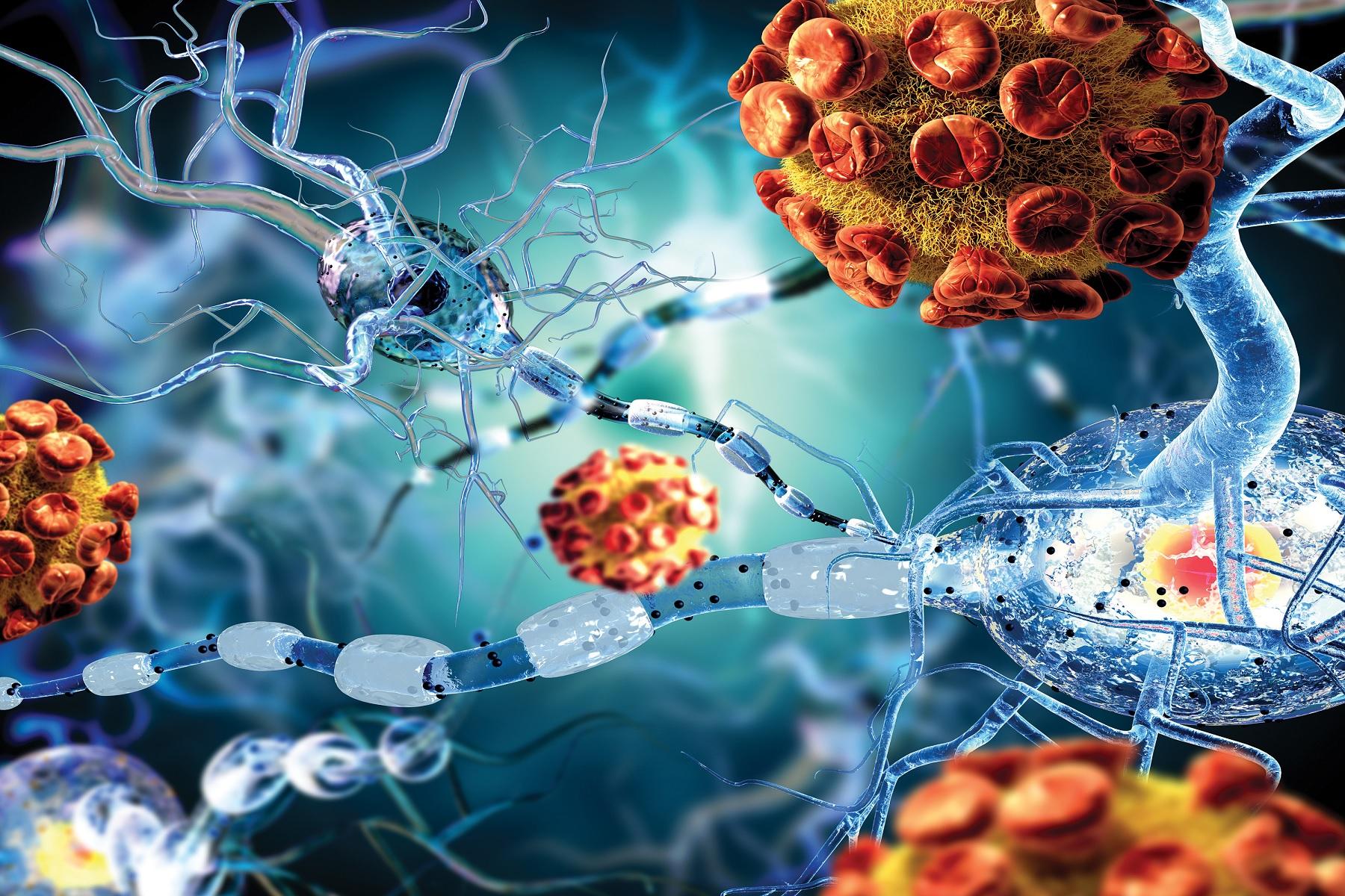 Αυτοάνοση ασθένεια ένζυμο: Εμπλέκεται σε βασικές μεταβολικές διεργασίες