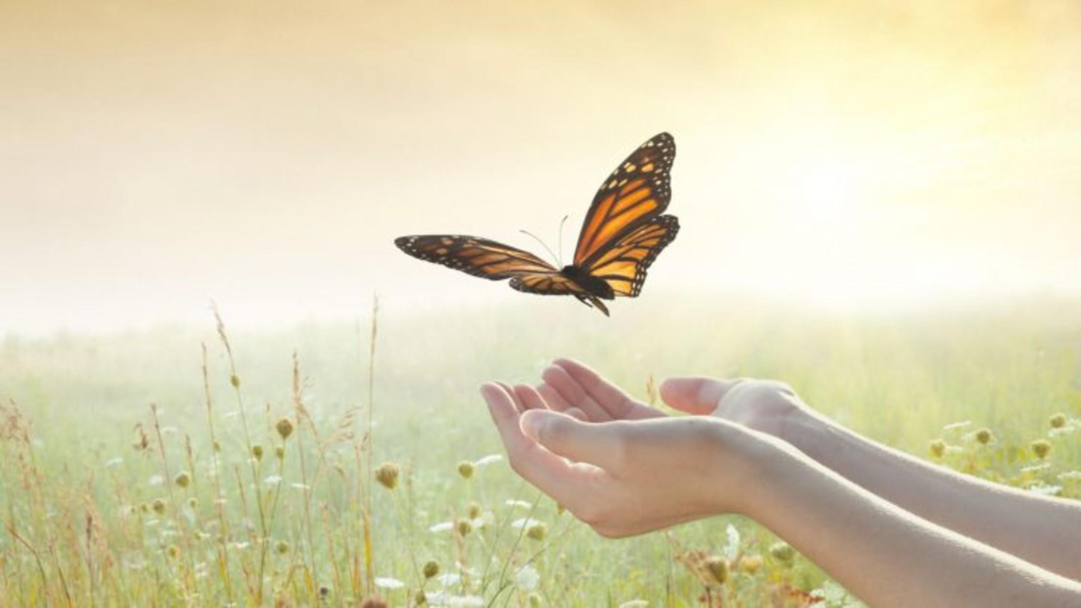 Αυτοφροντίδα: Συναισθηματική αναγέννηση