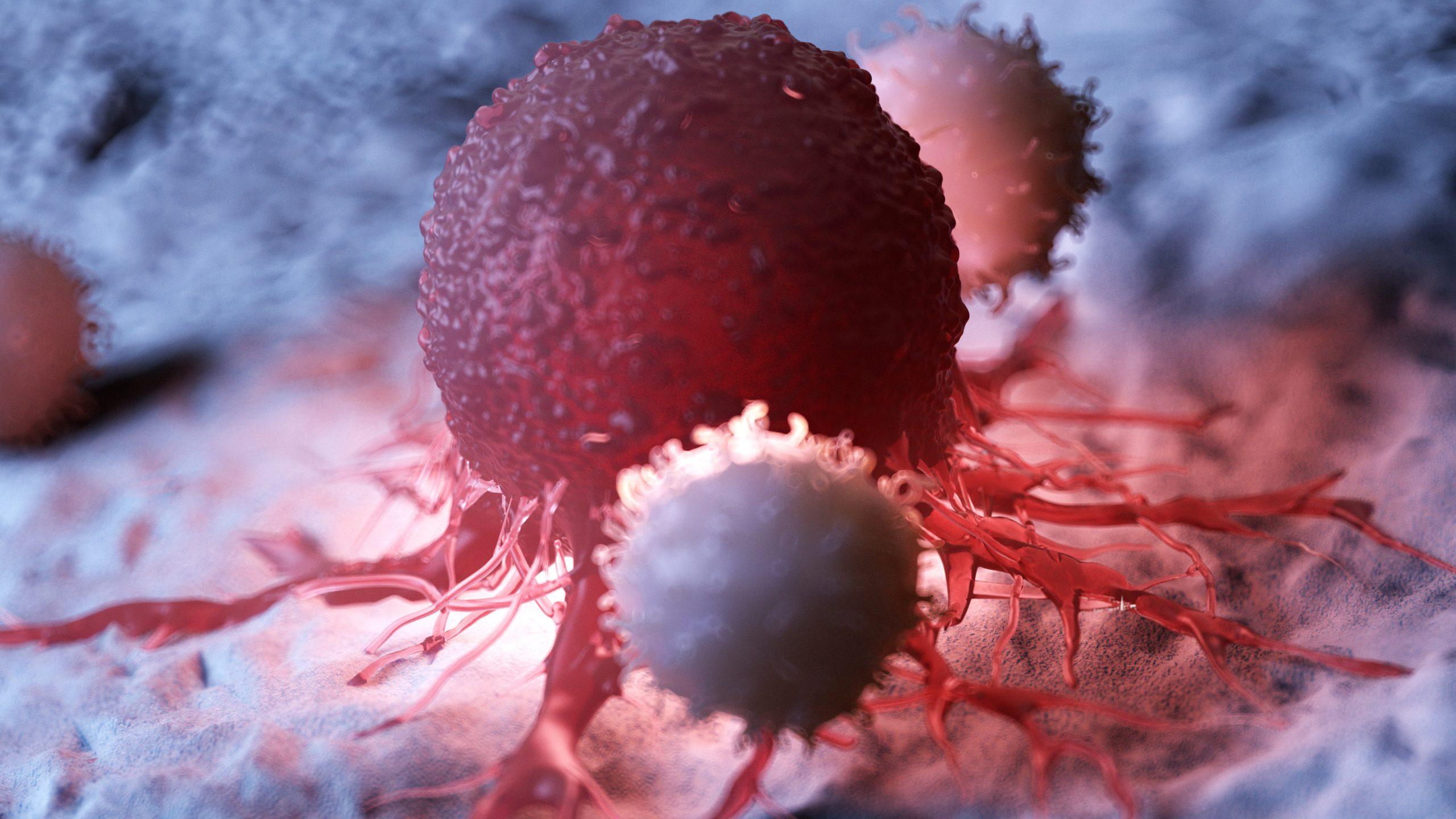 Καρκίνος: Μελλοντικές θεραπείες του καρκίνου θα μπορούσαν να βασίζονται στην αναστολή της καρκινικής αυτοφαγίας