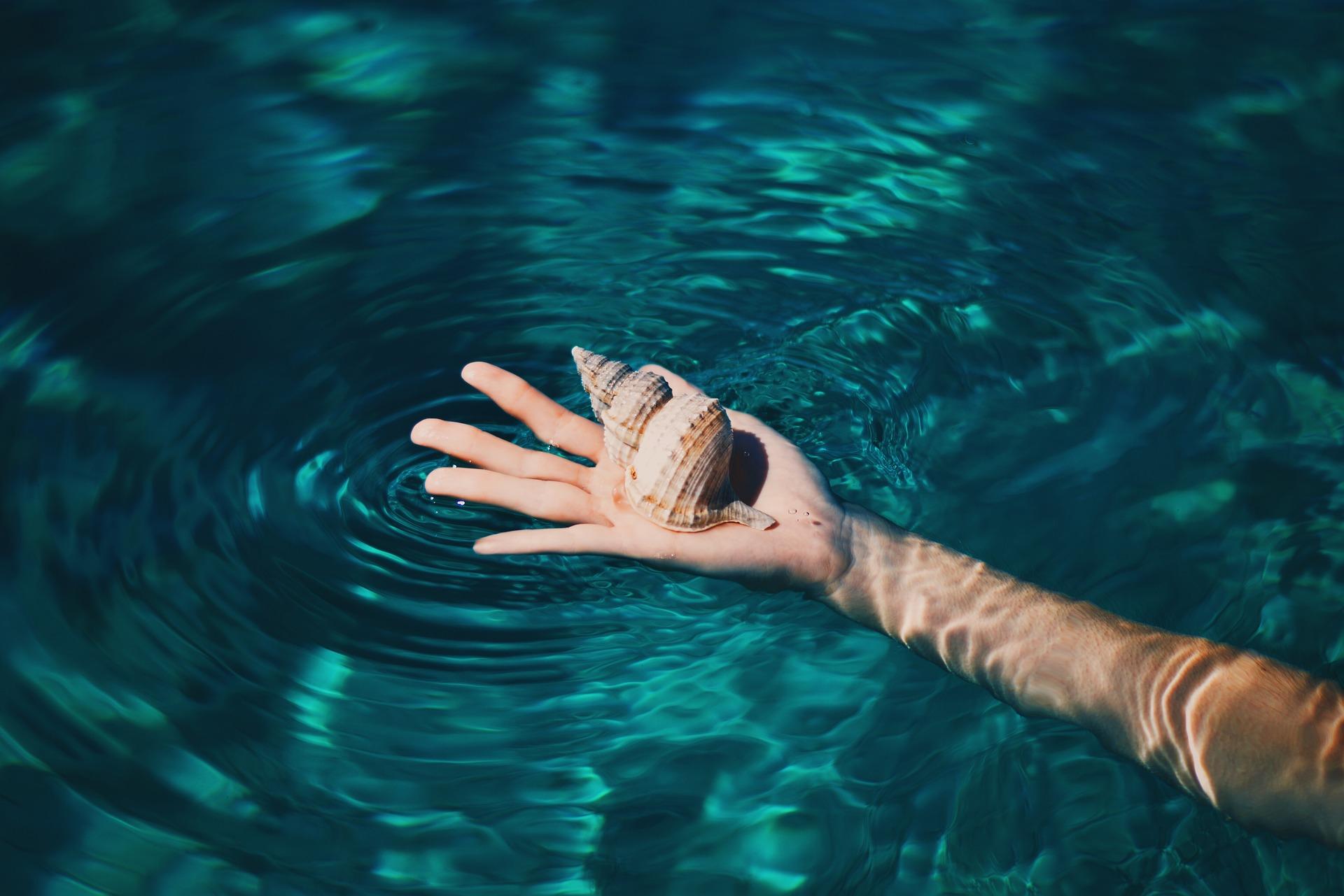 Τα κύματα της θάλασσας στ' αυτί σου μέσα από ένα κοχύλι
