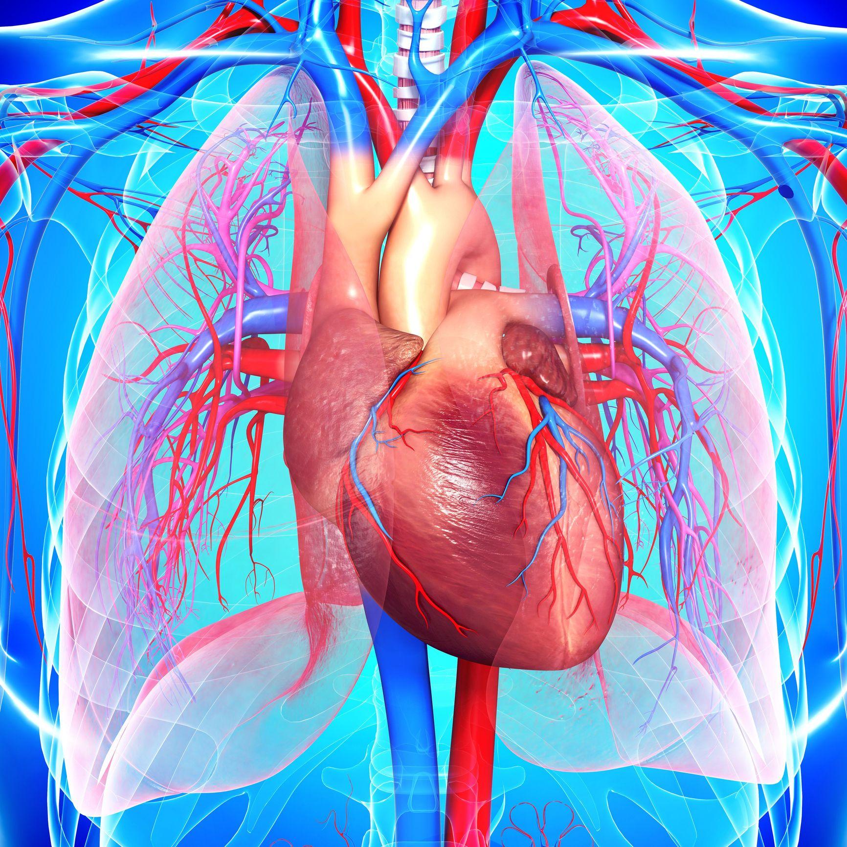 Καρδιακά Νοσήματα: Διατροφή μετά από χειρουργείο καρδίας