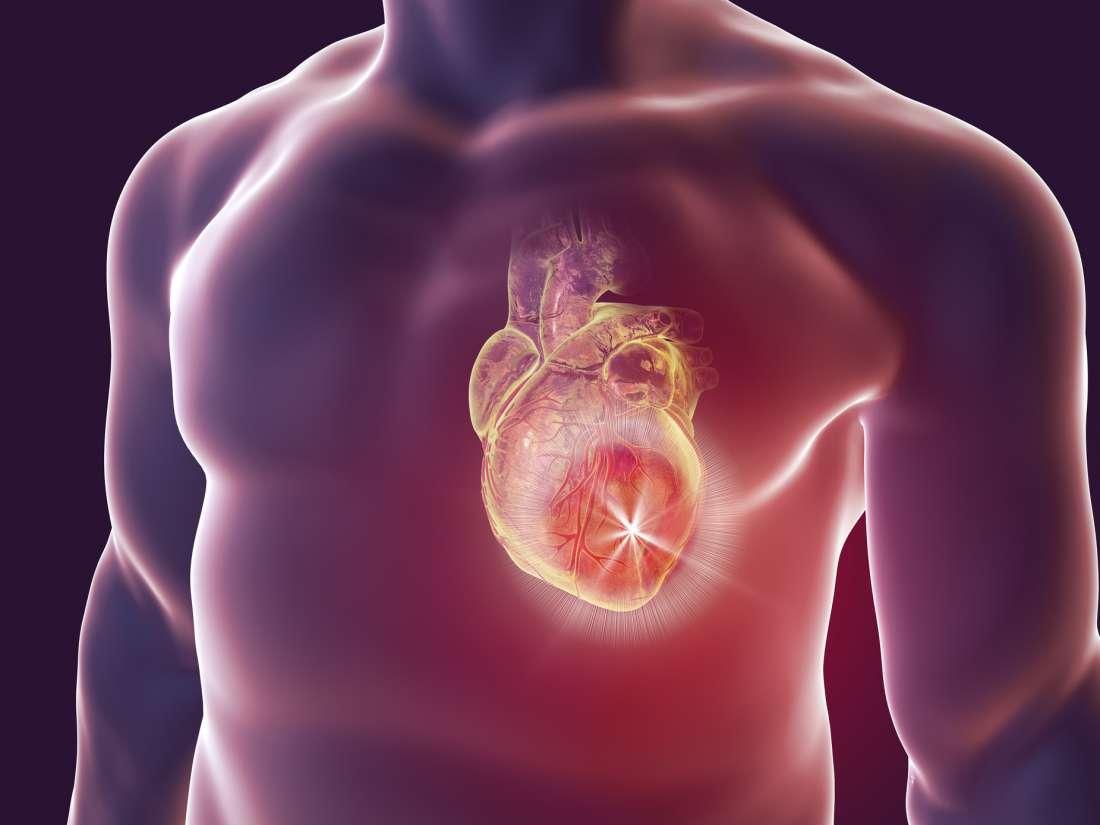 Καρδιά ένζυμο πρωτεΐνη: Πως επιτυγχάνεται ανάκαμψη μετά από καρδιακή προσβολή