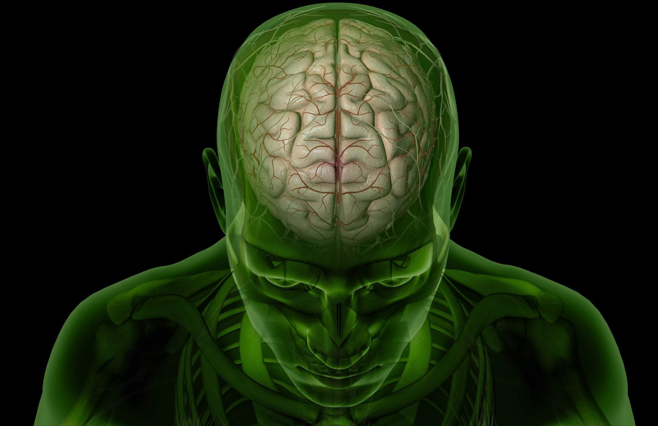 Τεχνητή Νοημοσύνη Εφαρμογές: Αισθητήρας σεροτονίνης βοηθά στην κατανόηση του εγκεφάλου