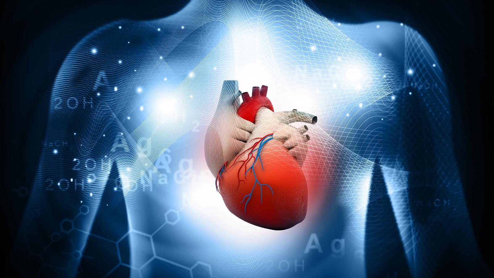 Αθλητισμός Οφέλη Καρδιά: Η τακτική άσκηση μπορεί να συμβάλλει στην πρόληψη της κολπικής μαρμαρυγής [vid]