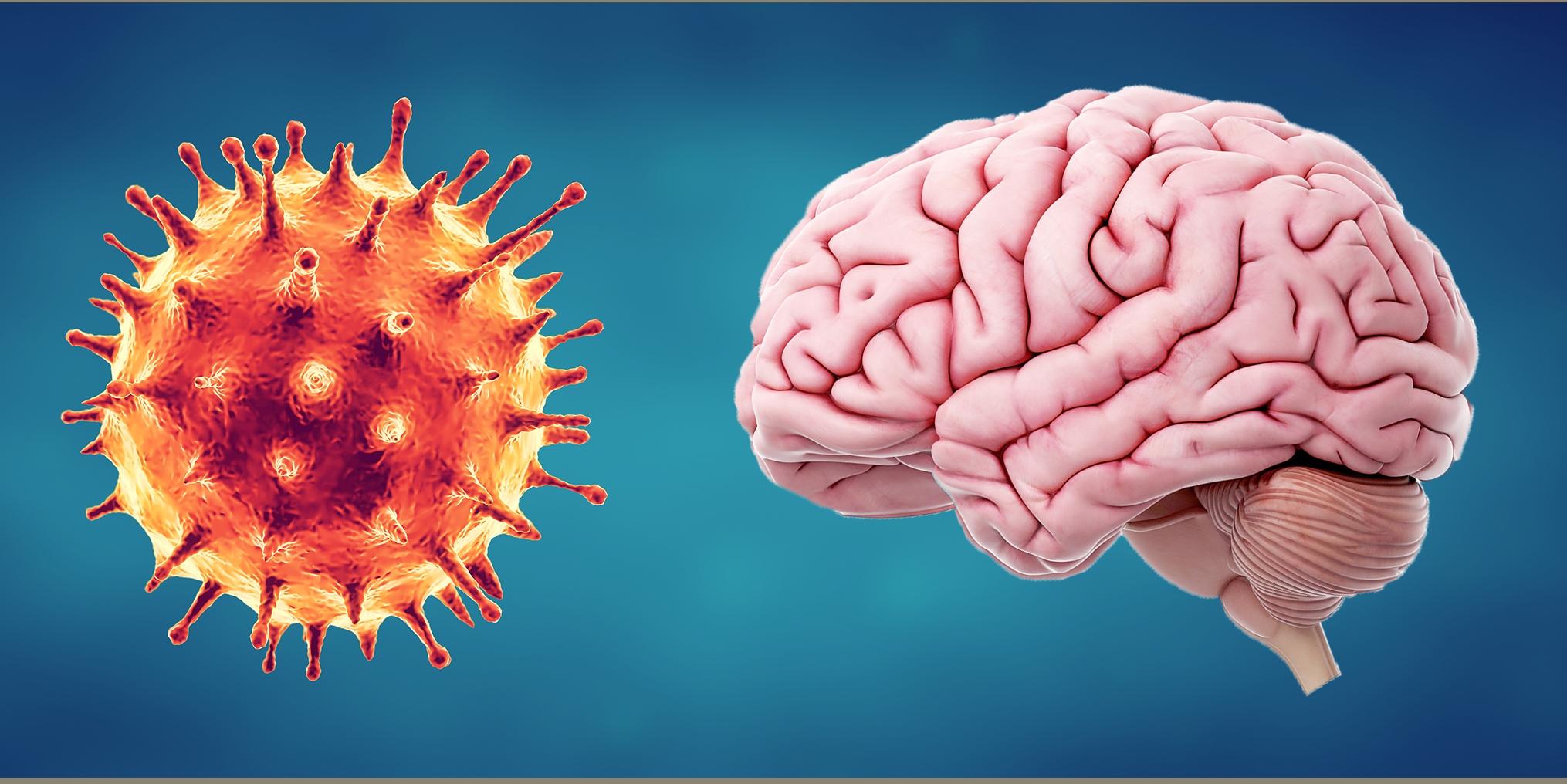 Κορωνοϊός κοινό σύμπτωμα: Πώς εισέρχεται ο ιός στο νευρικό σύστημα και καταστρέφει γεύση – όσφρηση