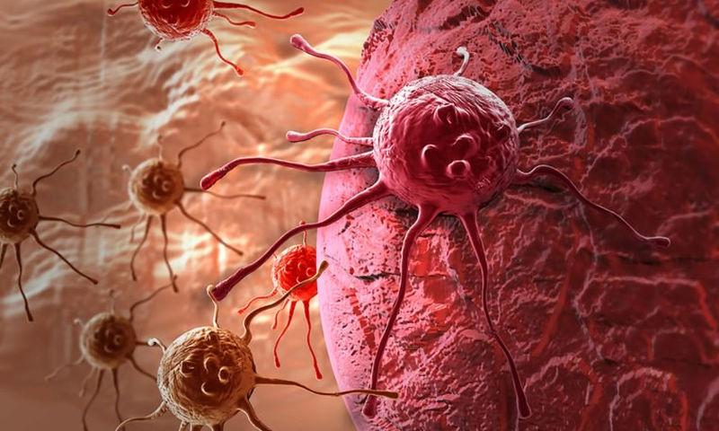 Καρκίνος: Γιατί τα καρκινικά κύτταρα χρειάζονται τόση πολλή ενέργεια