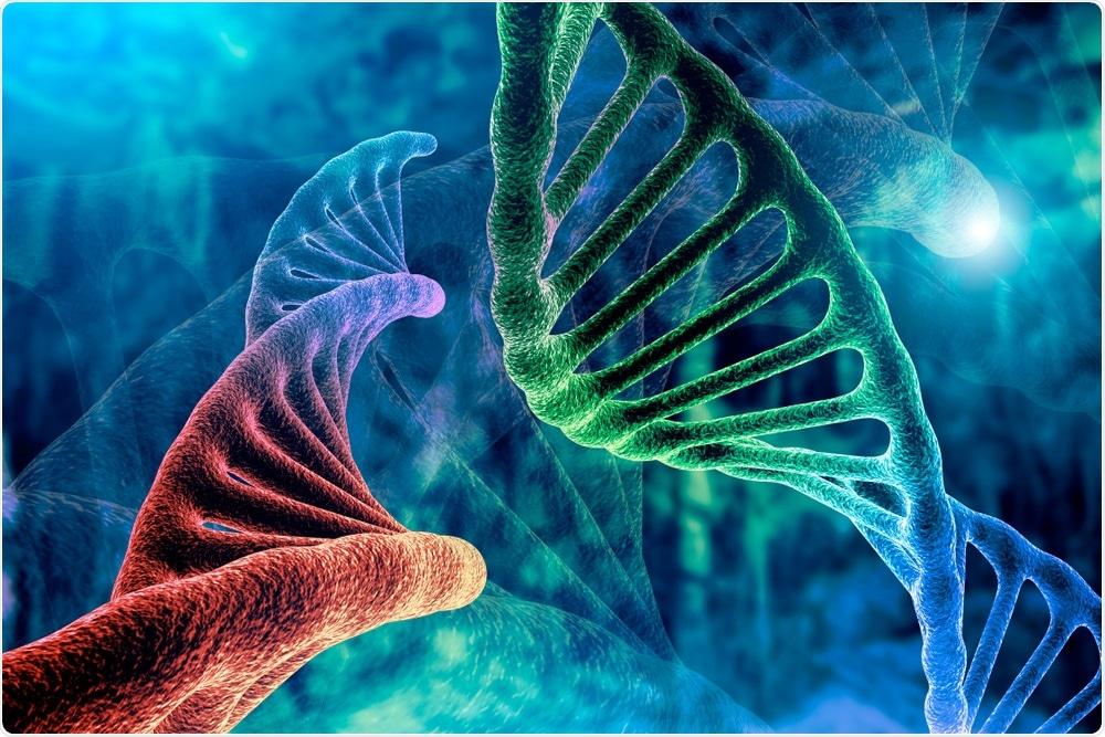Βιολογικό ρολόι: Το «Junk DNA» παίζει βασικό ρόλο στη ρύθμιση του βιορυθμού