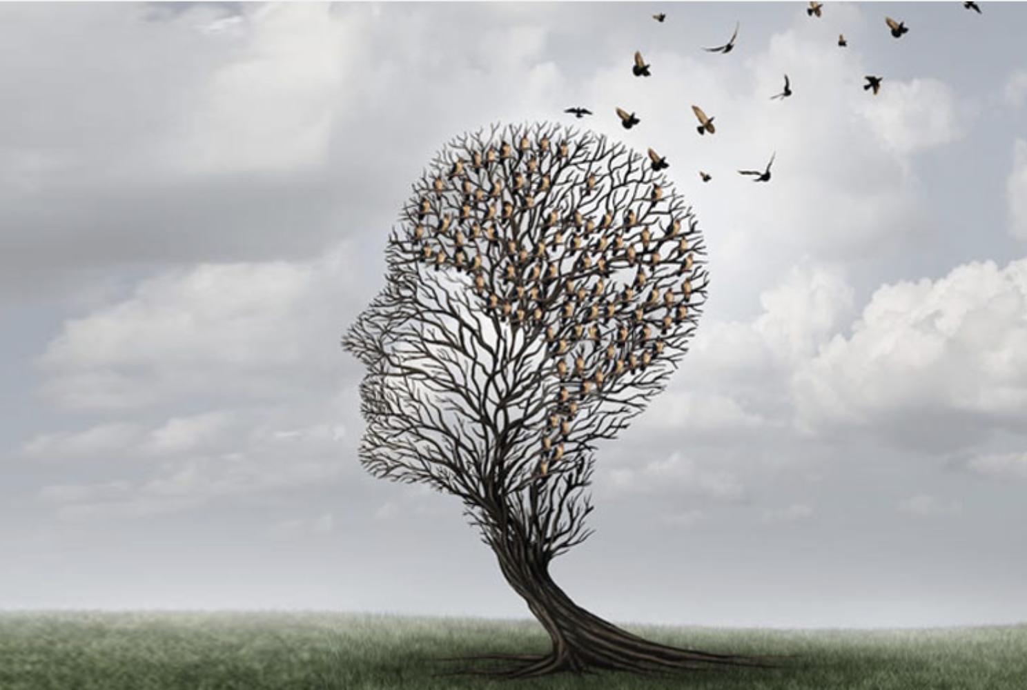 Αλτσχάιμερ: Αυτή η διατροφή μπορεί να μειώσει τον κίνδυνο της νόσου