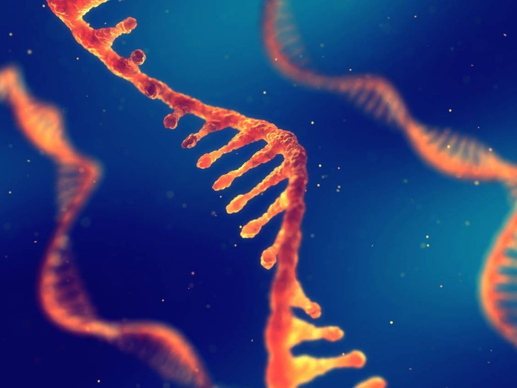 Επιστημονικά νέα: Πώς η mRNA τεχνολογία μπορεί να βοηθήσει στην καταπολέμηση του καρκίνου στο μέλλον