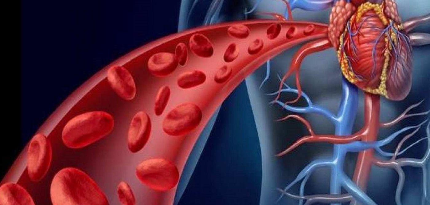 """Κύτταρα αιμοφόρα αγγεία: """"Κλειδί"""" για καρκίνο και αμφιβληστροειδοπάθεια"""