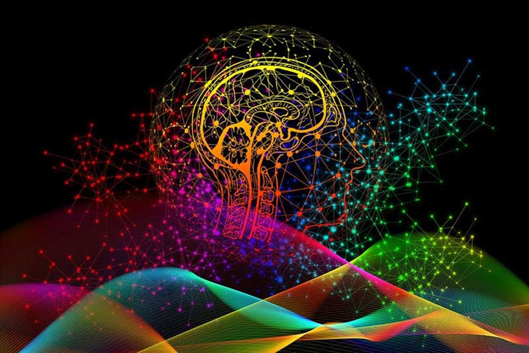 Εγκέφαλος βίντεο: Ο εγκέφαλος πάλλεται με κάθε χτύπο της καρδιάς [vid]