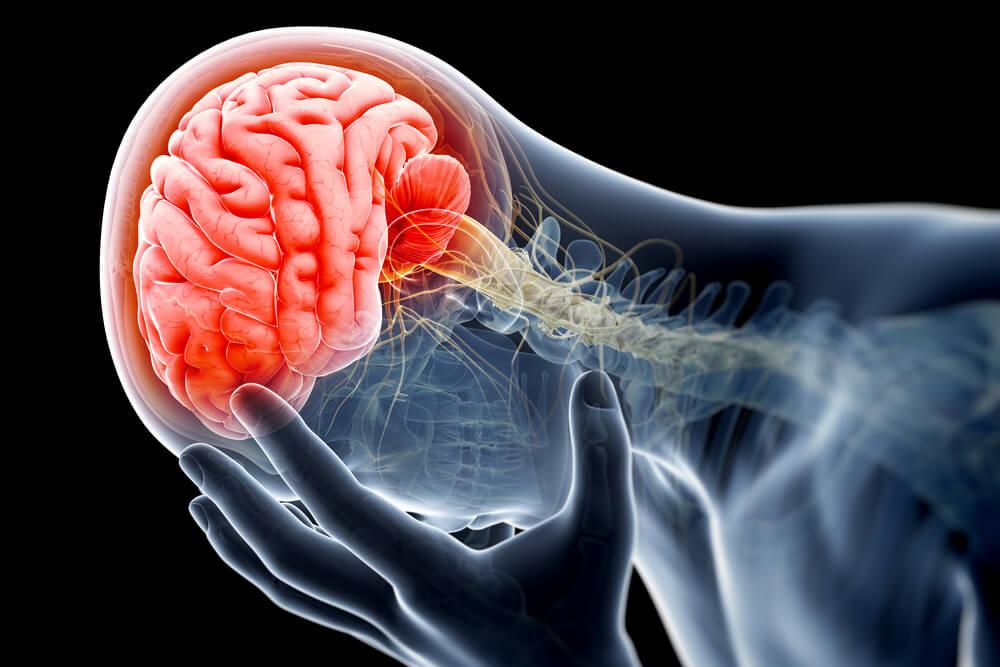 Εγκέφαλος τραύμα κύτταρα: Η «εγκεφαλική κόλλα» βοηθά στην αποκατάσταση κυκλωμάτων σε σοβαρό εγκεφαλικό τραύμα [vid]