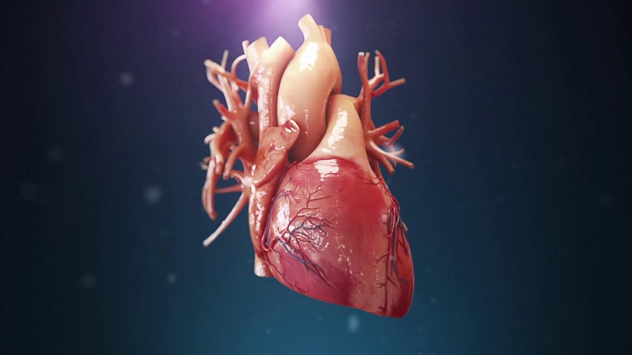 Άγχος Καρδιά: Εγκεφαλική δραστηριότητα που προκαλείται από το άγχος συνδέεται με πόνο στο στήθος από καρδιακή πάθηση [vid]