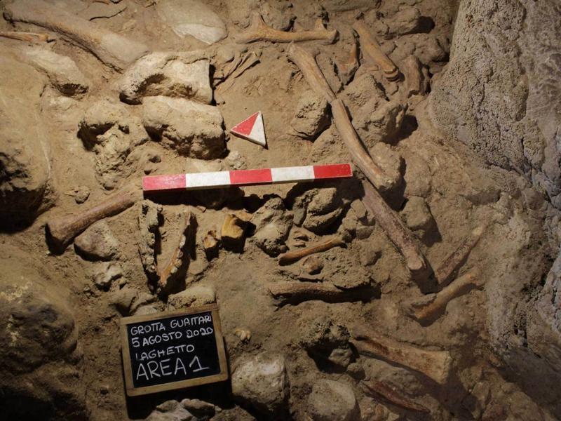 Νεάντερταλ: Κανένας σκελετός δε βρέθηκε ολόκληρος – Τα ανθρώπινα οστά έφεραν ίχνη από δόντια [pic]