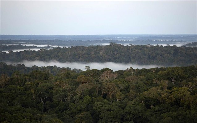 Κλιματική αλλαγή: Τα τελευταία 10 χρόνια η Αμαζονία της Βραζιλίας εκπέμπει περισσότερο CO2 από όσο απορροφά