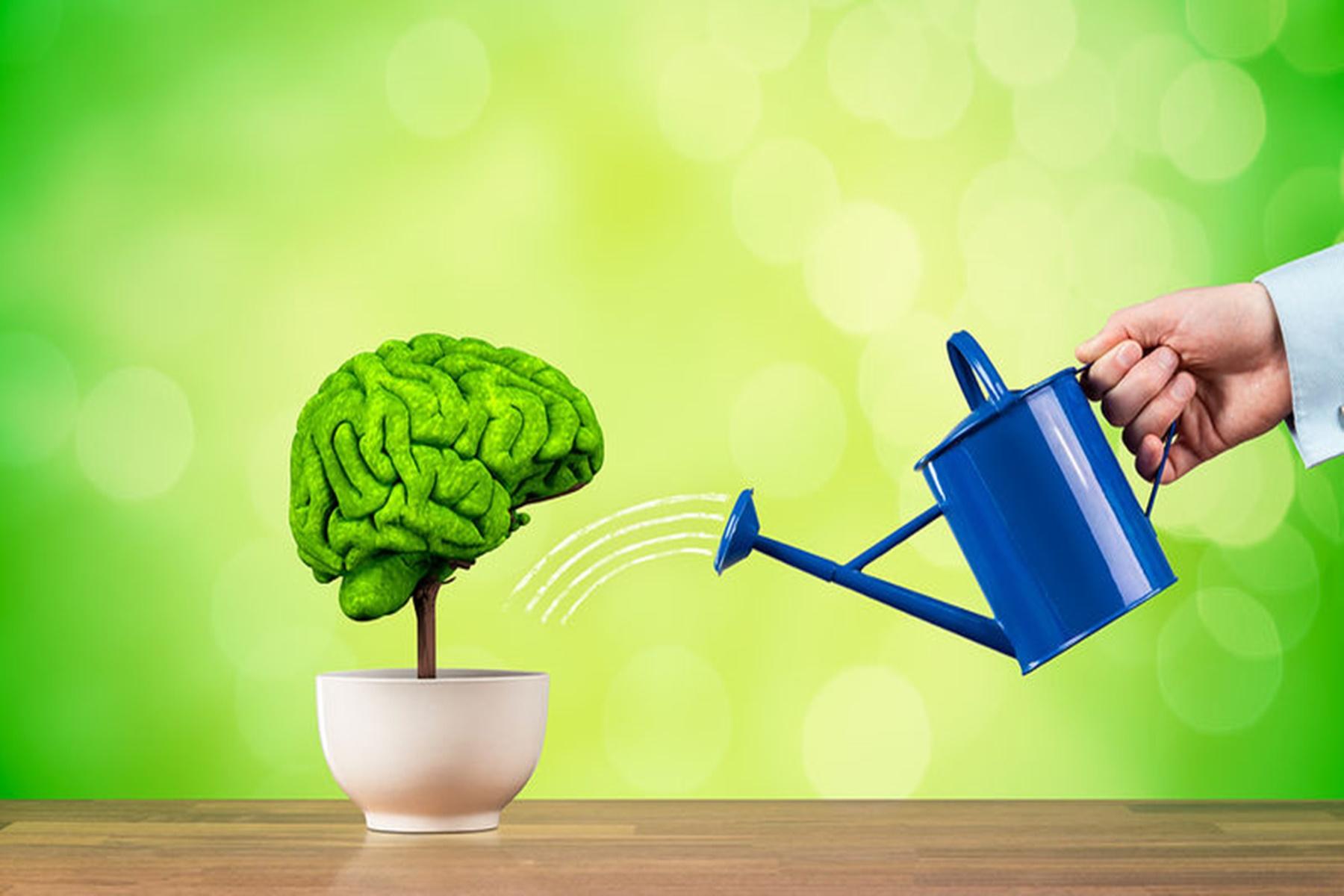 Προσδόκιμο ζωής : Ένας υγιής εγκέφαλος ενισχύει την μακροζωία