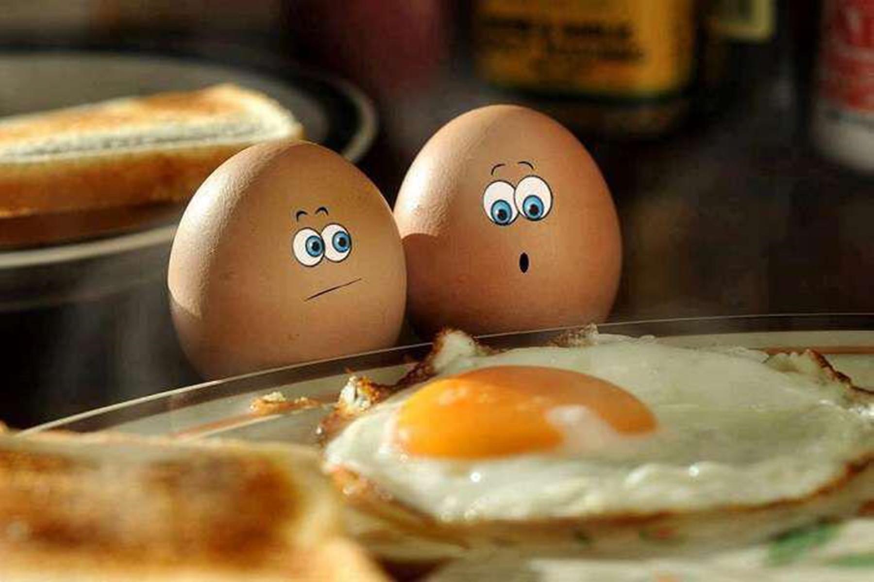 Αυγά : Η πιο θρεπτική τροφή του πλανήτη