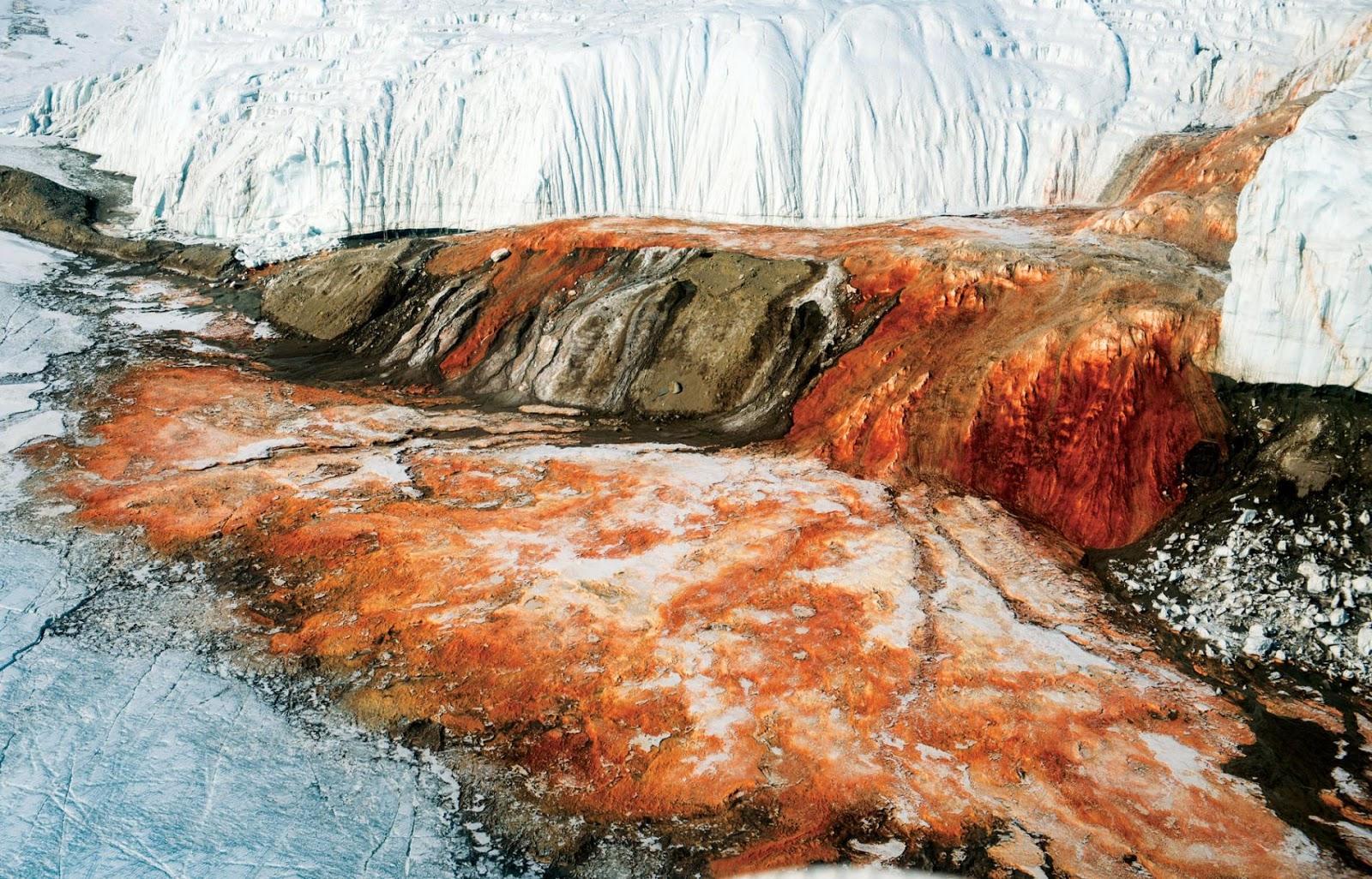 Άλγη στα όρη: Ερευνητική αποστολή θα αναζητήσει το αίμα των παγετώνων