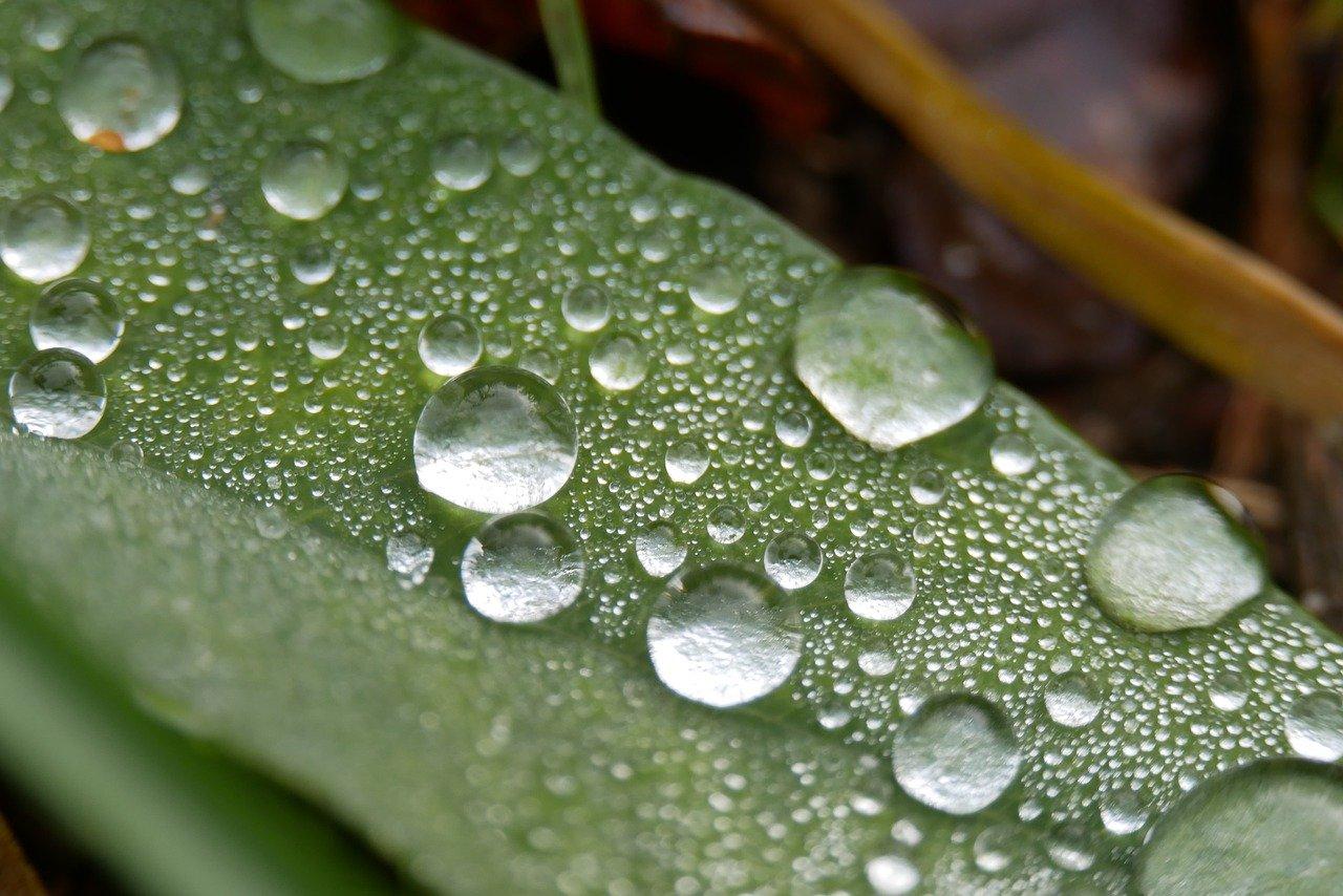 Υγρασία δυσφορία θερμοκρασία: Γιατί η υγρασία είναι τόσο δυσάρεστη στον άνθρωπο;