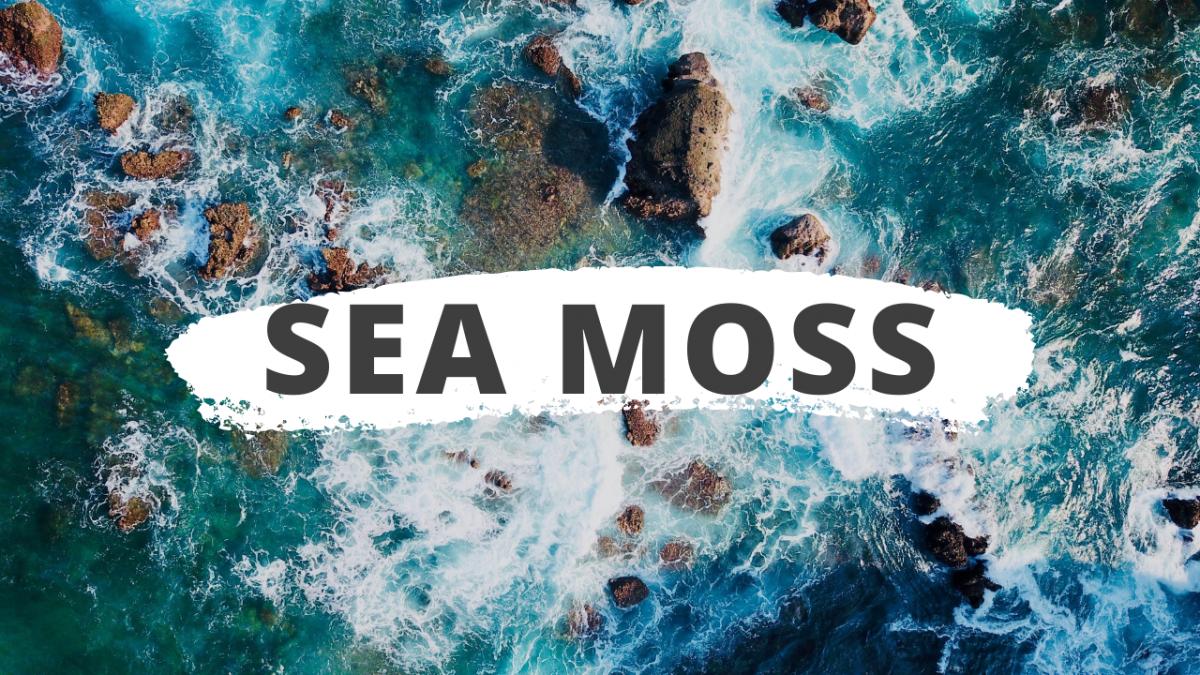 Θάλασσα Βρύα: DIY μάσκα ομορφιάς με Sea Moss Gel [συνταγή, vid]