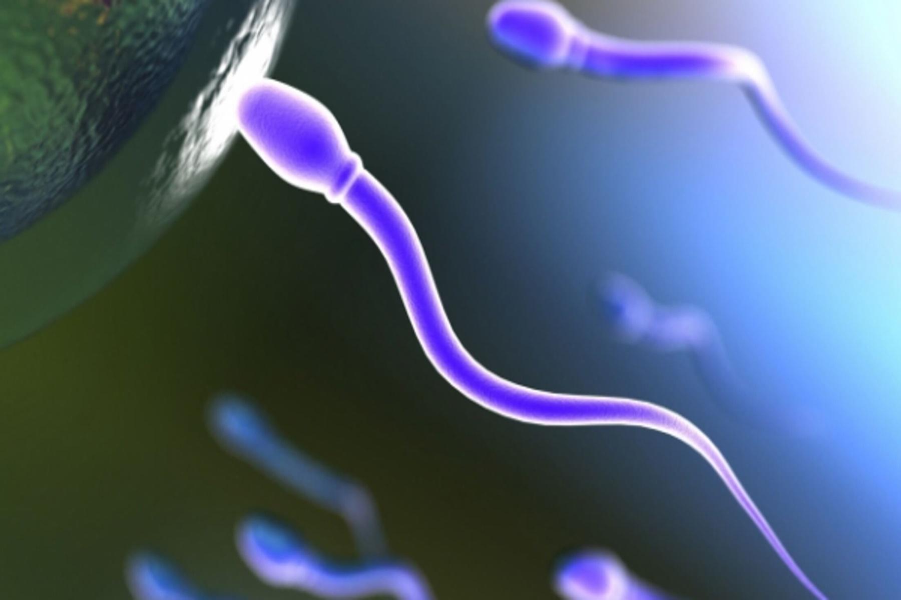 Εμβόλια Κορωνοιός : Η Επίδραση τους στο Σπέρμα