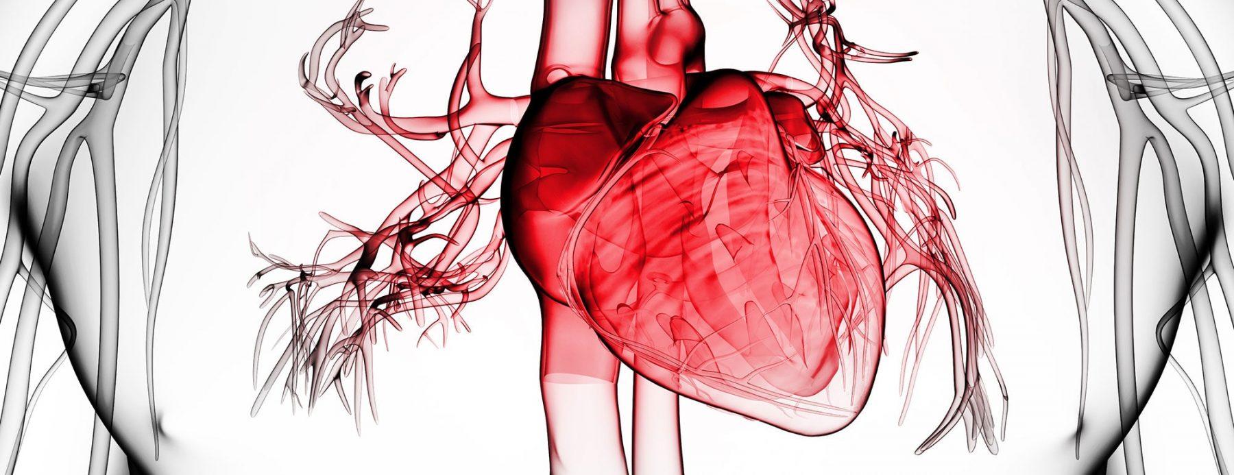 Διαστολική καρδιακή ανεπάρκεια : Αυτό είναι το προσδόκιμο ζωής των ασθενών