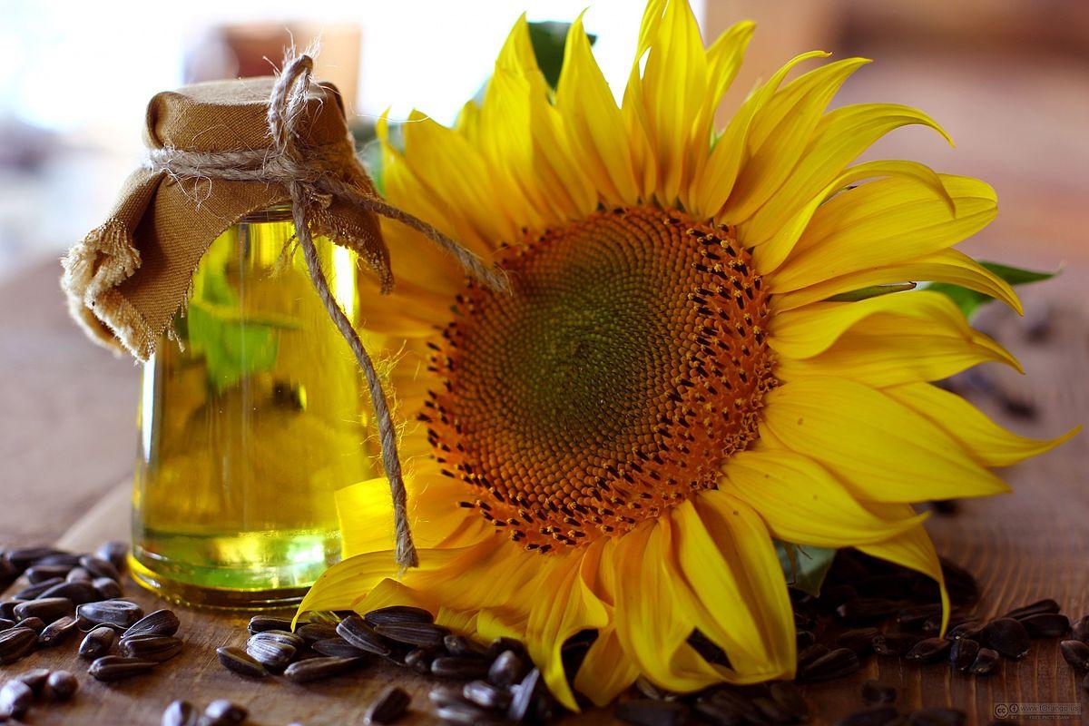 Βιταμίνη Ε: Οι καλύτερες πηγές βιταμίνης Ε και τα οφέλη της στην υγεία [vid]