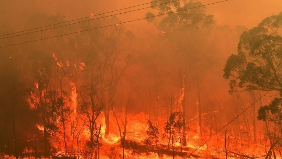 Φωτιά στη Σαρδηνία: Σε κατάσταση έκτακτης ανάγκης το νησί – Καναντέρ έστειλε η Ελλάδα