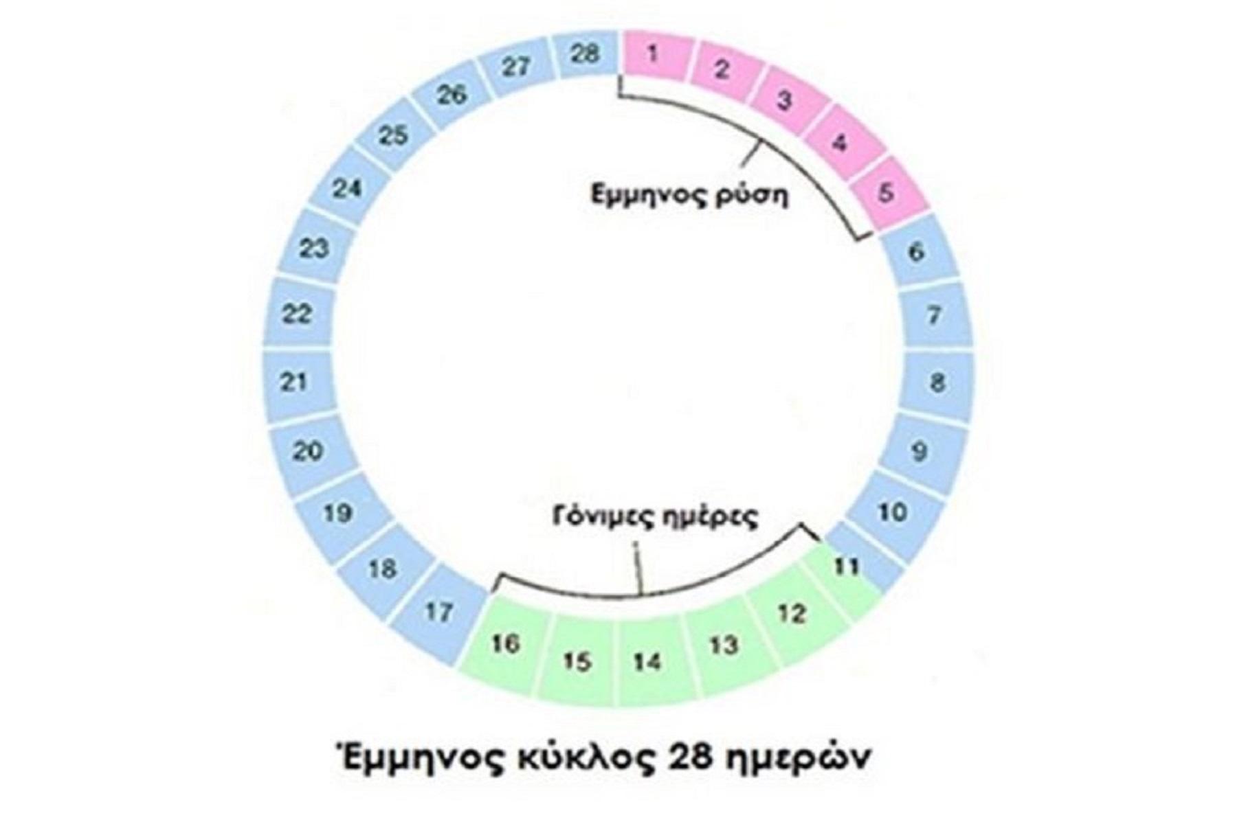 Εμμηνορροϊκός κύκλος: Κατάλληλη διατροφή σε κάθε φάση