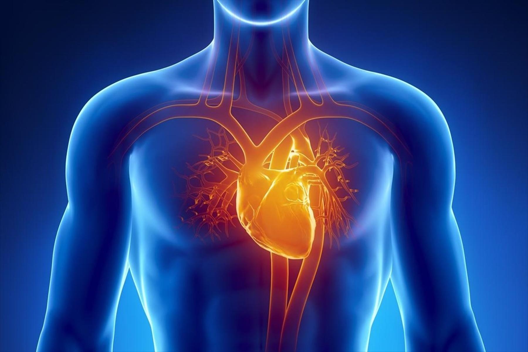 Καρδιά : Συμβουλές για να είναι υγιής