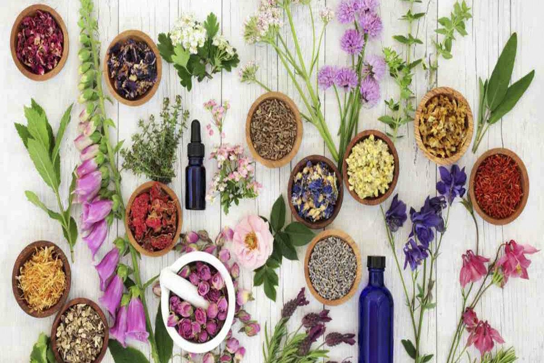 Βότανα μπαχαρικά : Αυτά πρέπει να τρώτε για υγιή οργανισμό