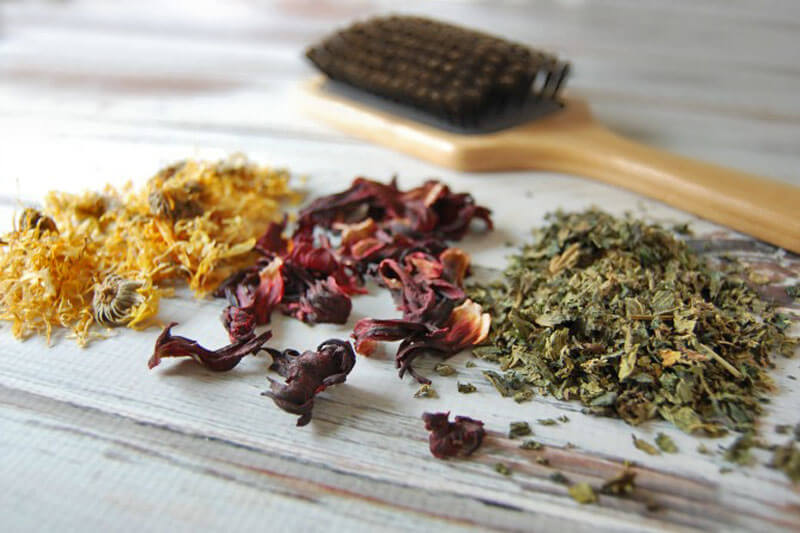Βότανα για μαλλιά: Ποια βότανα είναι κατάλληλα για κάθε τύπο μαλλιών-DIY συνταγή για θεραπεία στο σπίτι