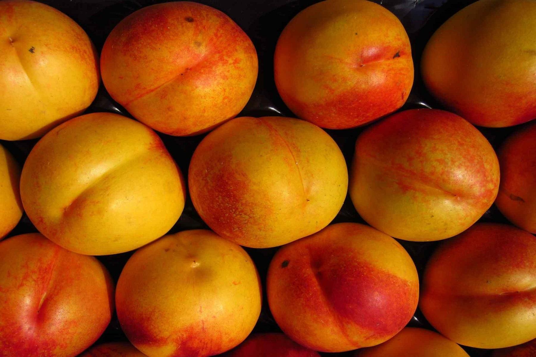 Φρούτο Νεκταρίνι: Πολλά τα οφέλη από την κατανάλωσή του για την υγεία αλλά και την απώλεια βάρους