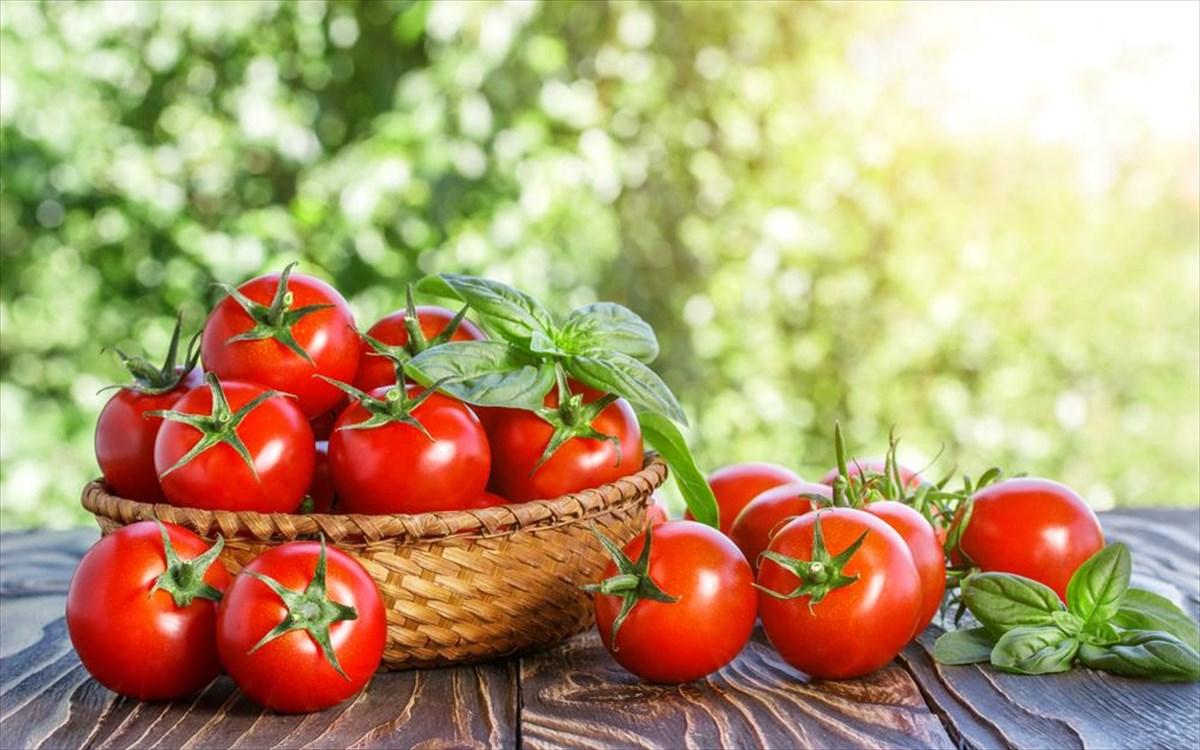 Ντομάτα θρεπτικά συστατικά: Μεγάλη η θρεπτική αξία της ντομάτας – Ποια πολύτιμα συστατικά περιέχει