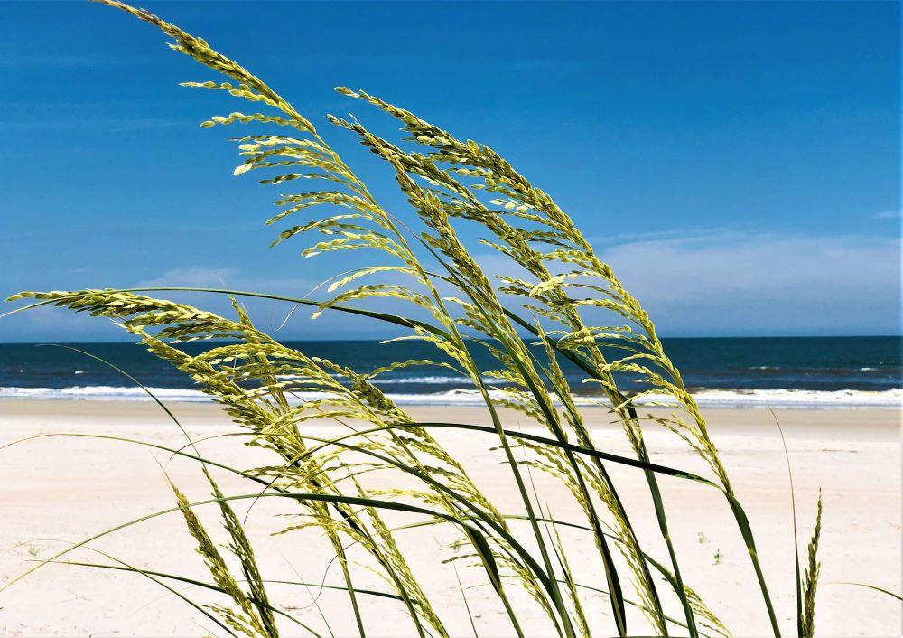 Θάλασσα: Η ζωή δίπλα στη θάλασσα μπορεί να είναι θεραπευτική για την ψυχική σου υγεία [vid]